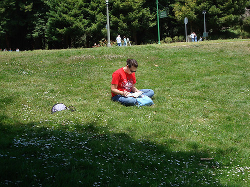 Reading in Golden Gate Park