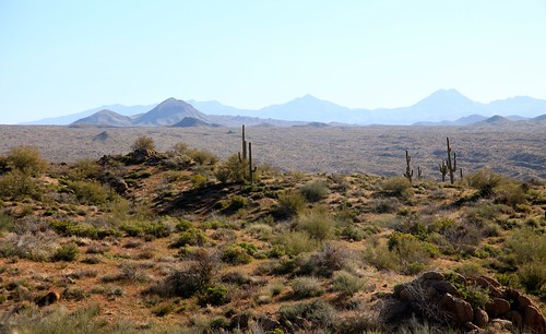 View on drive to Barlett Lake in Arizona.