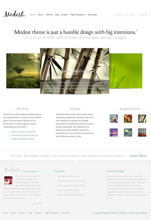modest-premium-wordpress-theme