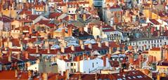 Vue d'en-haut (Judith Ott) Tags: lyon toits vuepanoramique