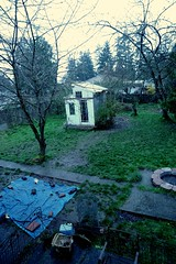 As things really are ... backyard, Broadview, Seattle, Washington, USA (Wonderlane) Tags: things really as 6477