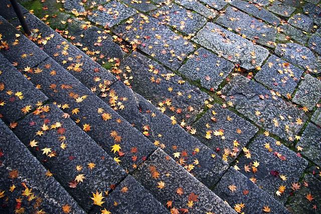 20101120_085110_談山神社