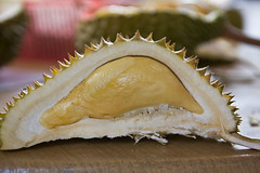 durian orchard eddie yong 36952_419022018275_693313275_4522525_77612_n