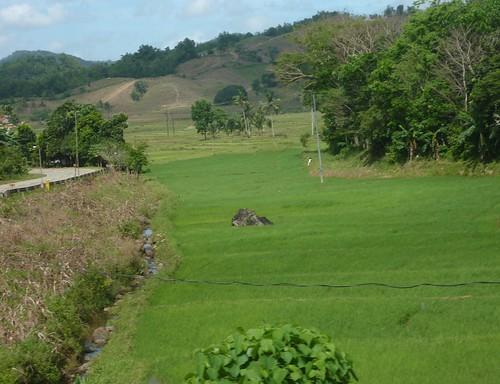 Panay-Roxas-Estancia-Iloilo (24)