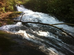 First Cascade of Falls on Last Branch of Tickanetley Creek