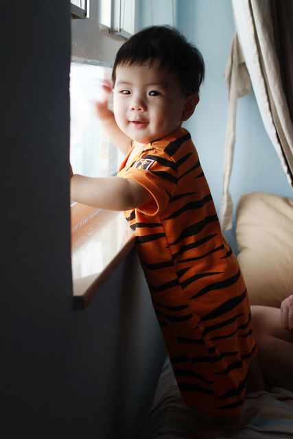 Baby Marcus Staring Outside the Window