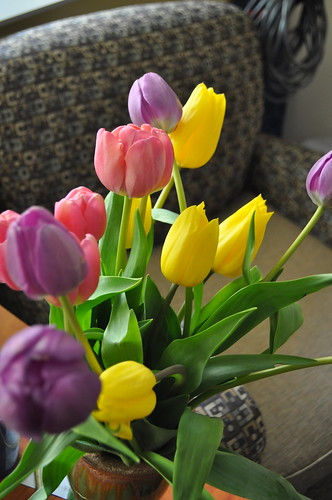 Easter Flowers by water your plants