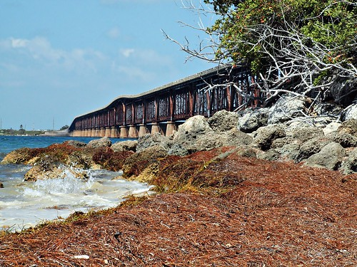 Down Low: Bahia Honda State Park, Florida Keys