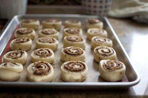 cinnamon rolls, rising