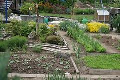 basel garden 025
