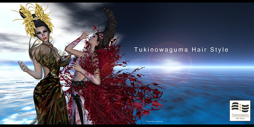 Tukinowaguma Poster - May 2011