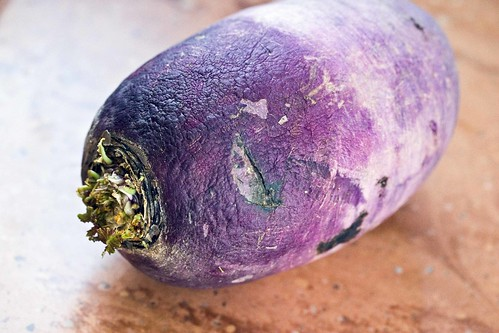 korean purple radish (weighing in at 1.25 pounds)