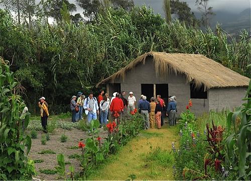Cotacachi-organic-garden