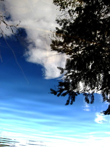 April 8 Trout Lake 056