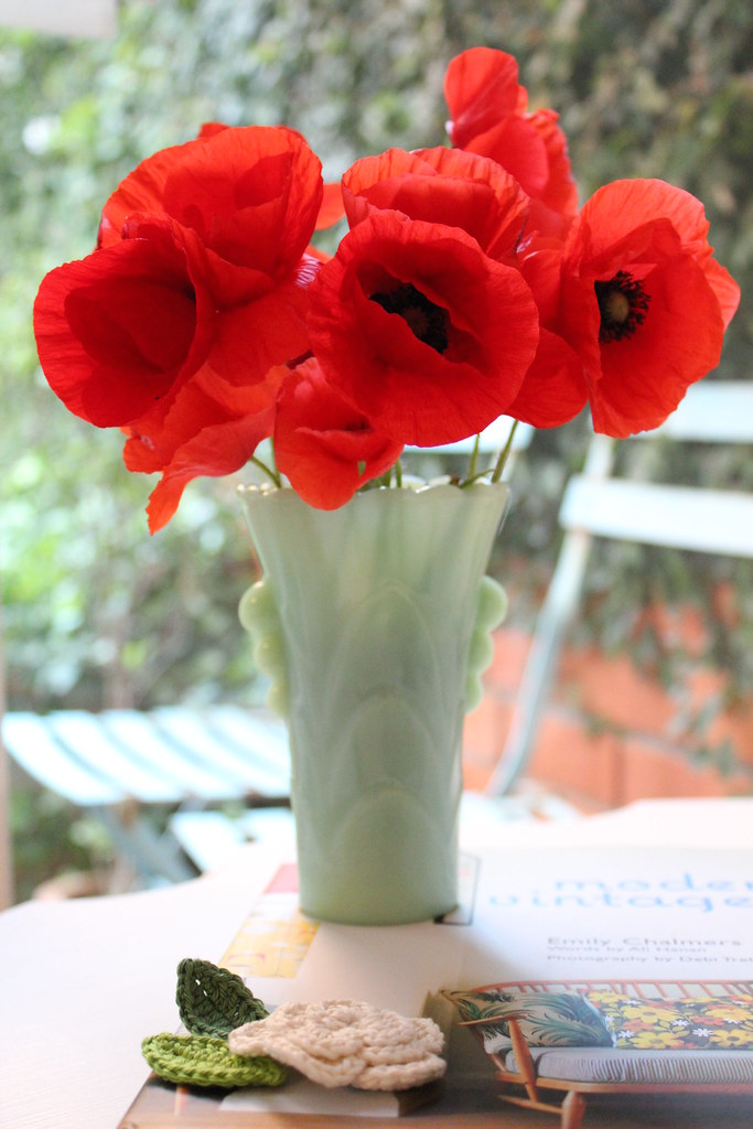 Fresh poppies :)