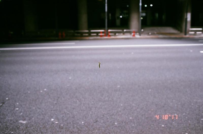 caterpillar_30