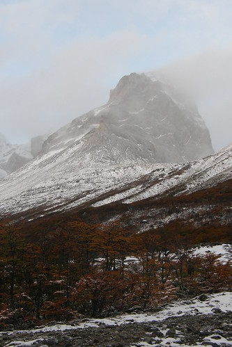 20100416111