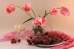 I Believe In Pink (panga_ua) Tags: pink flowers stilllife color composition canon spring tulips availablelight may ukraine attitude fabric marshmallow grapes drape arrangement tabletop bodegon naturemorte artisticphotography naturamorta glassvase artphotography sharpfocus greenstems metaltray powerofpink ibelieveinpink nataliepanga