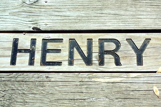 henryONE 300