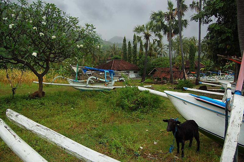 _Bali-Amed_3_