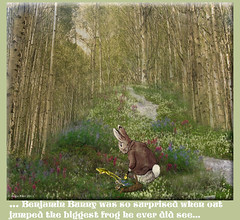 Benjamin Bunny (rubyblossom.) Tags: flowers trees bunny photoshop basket contest frog benjamin jumped 316 rubystreasures angiesimaginations