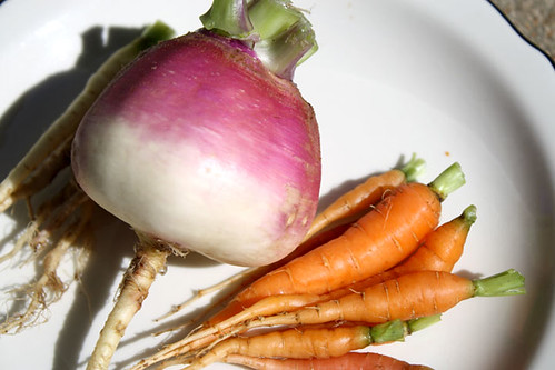 turnip-carrot