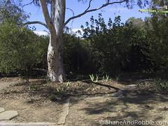 Barlow Street-20021110-00099(Canon PowerShot Pro90 IS) (ShaneAndRobbie) Tags: australia canberra act australiancapitalterritory scullin barlowstreet