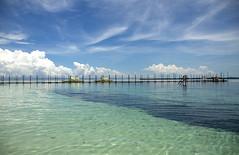 Bohol Sea, Central Visayas, Philippines (Aditi Patnaik) Tags: philippines bohol sea bamboo bridge blue waters water emerald blueskies clouds