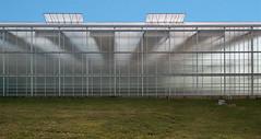 BPK III (jefvandenhoute) Tags: belgium belgi belgique duffel light lines shapes greenhouse nikond800 photoshopcs6