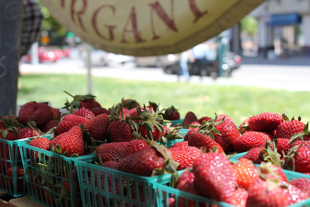 Organic Strawberries - Capay IMG_0657