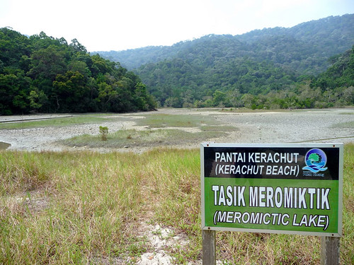 Pantai Kerachut - dried up meromictic lake