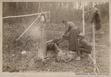 Photo of Ojibway (Chippewa) Indians smoking and tanning buckskins in a camp. Collected for the Eleventh Census of the United States, 1890. Photographed by Ingersoll photo studio, St. Paul (Minn); Thomas Donaldson collection. Penn Museum image #148617
