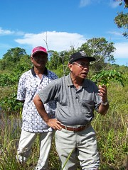 Siska_15 (RarePlanet) Tags: wildlife reserve credit aceh singkil photo fransisca bogor1 rawa sumatra ariantiningsih