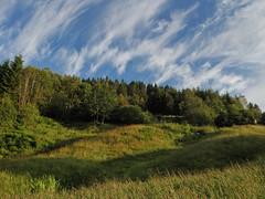 Gras (Sigve Arntzen) Tags: best buck gress calcutta laks lawson sharpness str sluk gaula laksefiske slotten bortenlosen trnderskjea