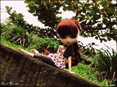 Alice (Carol Parvati ™) Tags: doll body alice groove pullip picnik rozenmaiden obitsu junplanning 27cm craziia suiseiseki obitsubody crazzia hardbust carolparvati