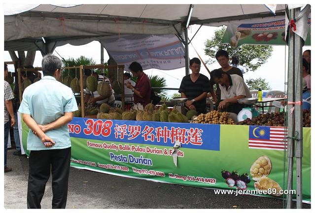 Pesta Durian @ Balik Pulau - 308 Durian Estate