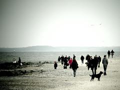 Niendorf Strand (Paul und Lotte) Tags: beach strand germany deutschland balticsea ostsee schleswigholstein norddeutschland niendorf