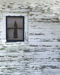 CurtainedWindow (Roadside Gallery) Tags: building decay farm oldbuilding decayed oldfarmhouse oldscasocietyforcommercialarcheology roadsidegallery