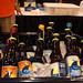 Indigo Imp Bottles
