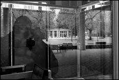 08h00 : ô tôt portrait ... (Philou Philou) Tags: vittel reflets mfcc