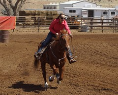 Dewey Barrel Race (Garagewerks) Tags: arizona horse woman sport female race all sony country barrel arena rodeo dewey cowgirl athlete equine 50500mm views50 views100 views200 views400 views300 views250 views150 views350 f4563 slta77v