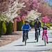 Winnie Spring bikers