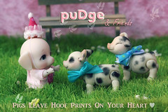 Pigs Leave Hoof Prints On Your Heart <3 (chartar_69) Tags: charlescreaturecabinet daisydayes pigballjointeddoll 6cm tinymicro6cm pudge
