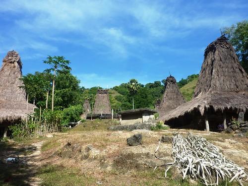 Sumba ouest-Praigoli-Village (10)