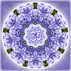 crown of heaven (SueO'Kieffe) Tags: nature digital photoshop mandala spirituality