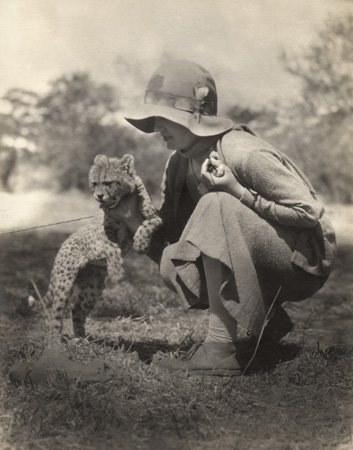 Williamina Meyer de Schauensee and cheetah cub in Southwest Africa (now Namibia). The photo was taken in 1930 as part of the Academy of Natural Sciences Ornithological Expedition. Williamina and her husband Rudolphe traveled Southwest Africa and the Bechuanaland Protectorate (now Namibia and Botswana) looking for bird specemins, and kept an album of their adventures. Penn Museum image 175493
