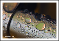 Is Photography An Art? - Waterdrops N6346e (Harris Hui (in search of light)) Tags: canada macro art closeup vancouver photography droplets nikon bc richmond waterdrops mundanedetails macrolens macrophotography d300 getcloser davidward nikonuser nikon105mmmacro nikond300 bathroomcloseup harrishui vancouverdslrshooter seetheworldwithyourownvision creatuvevision isphotographyanart waterdropsinbathroom