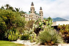 Cassino Royale (Artur Staszewski) Tags: trees sea vacation cactus sun france mountains building green water grass architecture port canon french coast spring warm riviera south side sigma sunny tourist monaco exotic shore vegetation carlo monte cassino parc burned attraction visited 550d 1770mm t2i