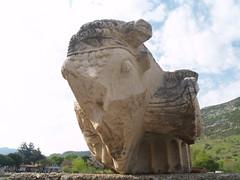 Ephesus - Odeon / Bouleuterion (drencrome) Tags: turkey trkiye odeon romanempire ephesus seluk efes ion ephesos arkeoloji columncapital archeaology bouleuterion ionicorder iyon stunbal