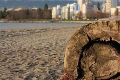 First Beach (fotoeins) Tags: travel canada vancouver canon eos britishcolumbia englishbay stanleypark westend xsi firstbeach salishsea eos450d henrylee 450d fotoeins ayyulshun henrylflee fotoeinscom